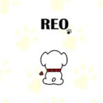 LINE 着せかえ 第3弾「REO」  絶賛・好評・発売!!